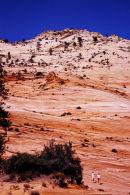 Montagne stratifiée - Zion NP, Utah