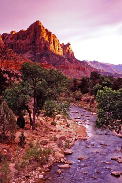 Le massif Watchman et la rivière Virgin - Zion NP, Utah