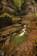 Bassins dans le canyon de Watkins Glen
