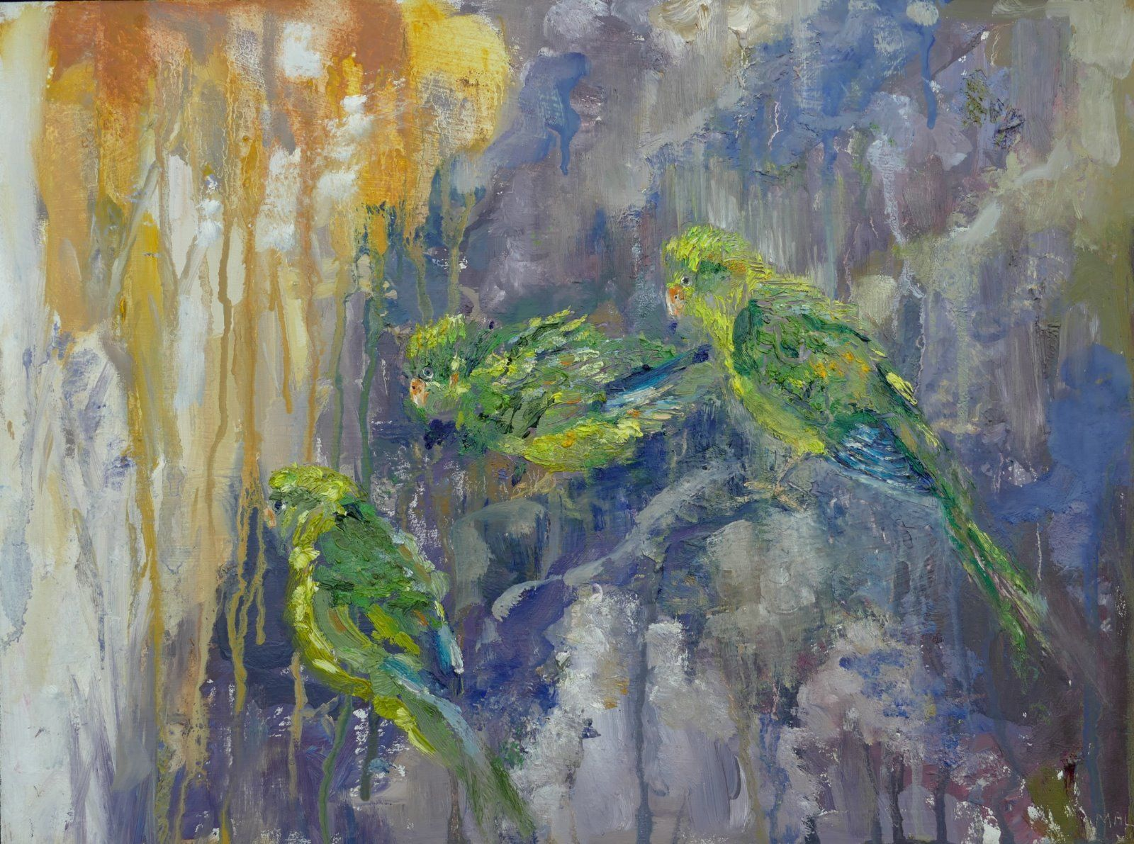 Three Parakeets Peru