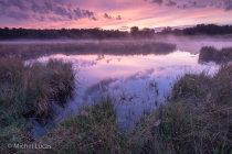 Kleurrijke zonsopkomst, Overasseltse en Hatertse Vennen