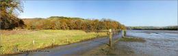 Tidal road Aveton Gifford.