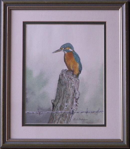 """Kingfisher on Post"""