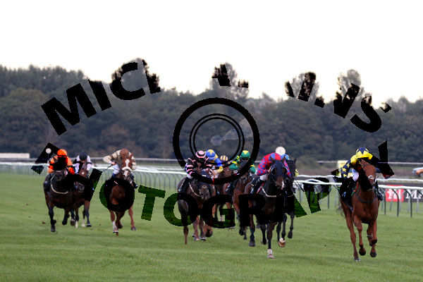 Race 7 - Vision Clear (4)