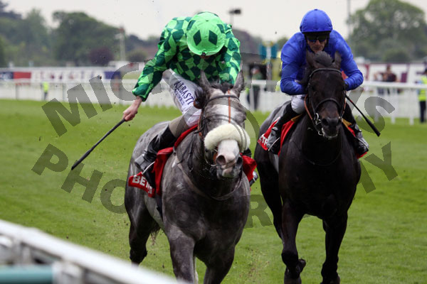 The Grey Gatsby - RACE 3 (10)