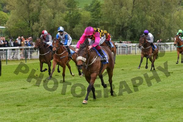 Race 1 - Dame Gladys (11)