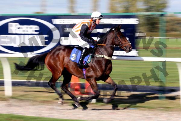 Race 1 - L Chamise (2)