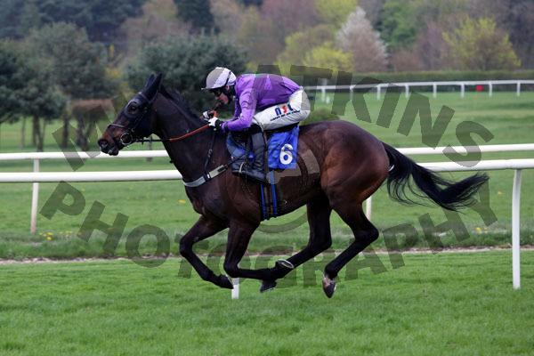 Race 1 - L Inganno Felice (10)