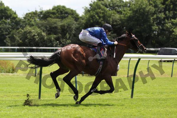 Race 2 - Alwahsh (7)
