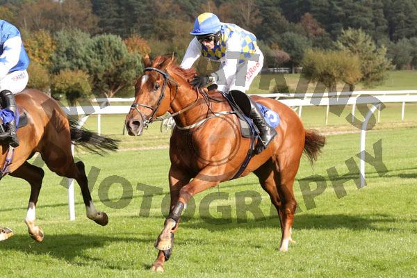 Race 2 - Normal Norman (8)