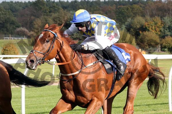 Race 2 - Normal Norman (9)