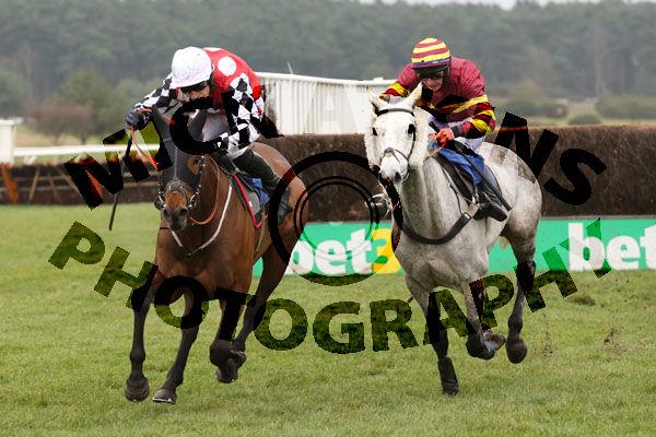Race 2 - Parlour Maid (10)