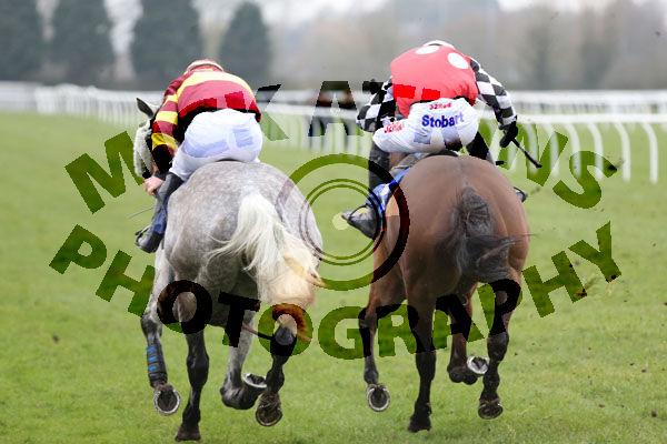 Race 2 - Parlour Maid (12)