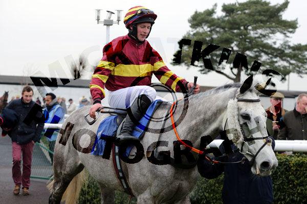 Race 2 - Parlour Maid (15)
