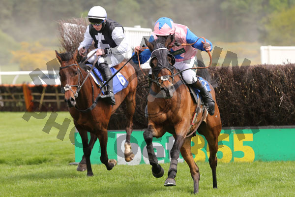 Race 2 - Shady Glen (8)