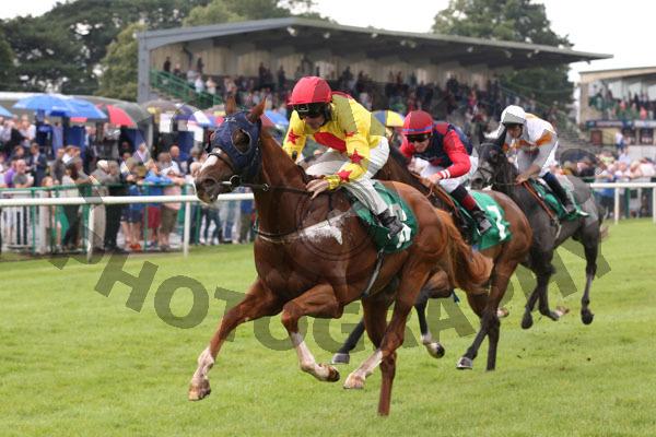 Race 3 - Sir Derrick (7)