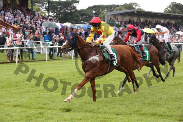 Race 3 - Sir Derrick (8)