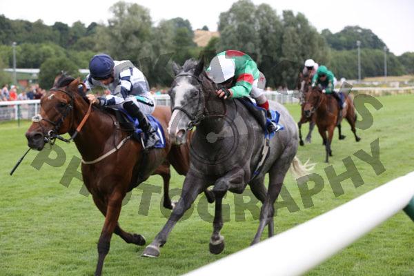 Race 3 - Summerghand (9)