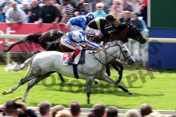 Race 3 - Thundering Blue (6)