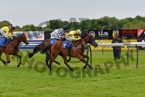 Race 4 - Daira Prince (10)