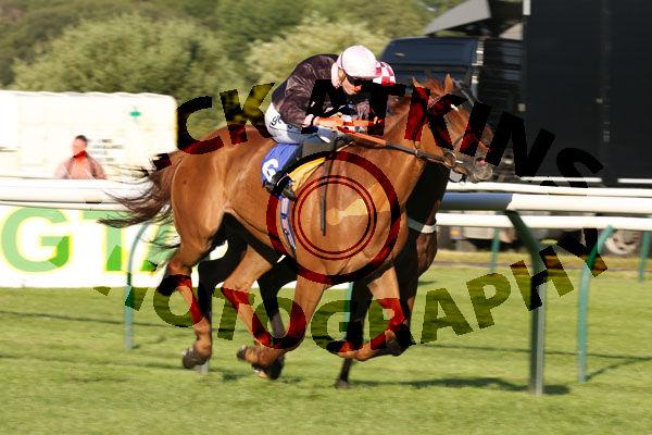 Race 4 - Goscote (4)