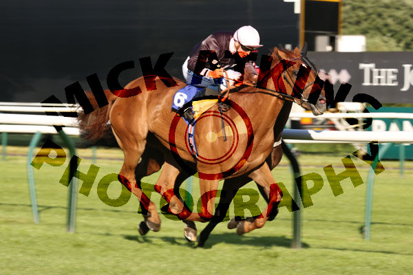 Race 4 - Goscote (6)