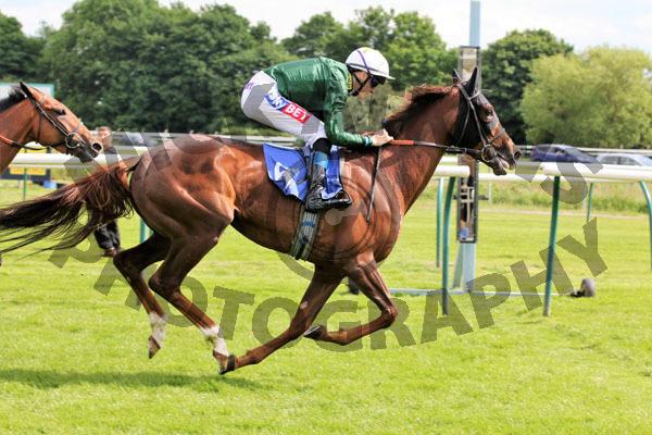 Race 4 - Harebell (12)