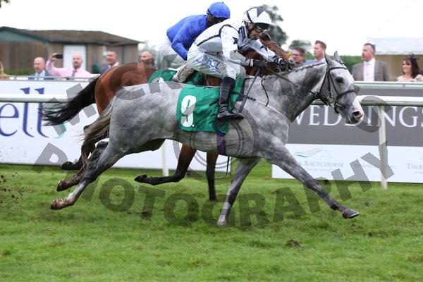 Race 4 - Queen Penn (7)