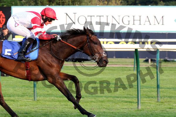 Race 5 - Al Nafoorah (14)