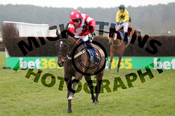 Race 5 - Dartford Warbler (6)