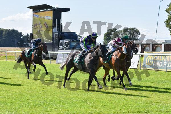 Race 5 - Le Manege Enchante (10)
