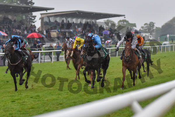 Race 5 - Maid In India (10)