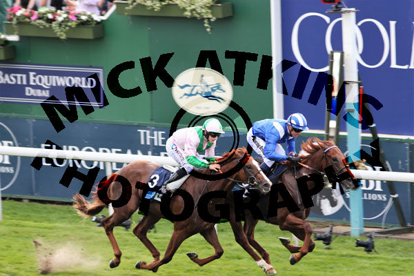 Race 5 - Molatham (4)