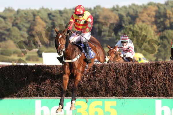 Race 5 - Royal Village (4)