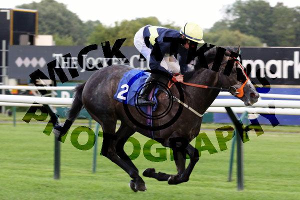 Race 6 - Corncrake (4)