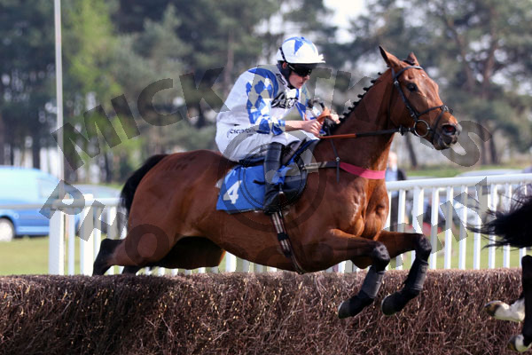 Russborough - Race 6 (9)