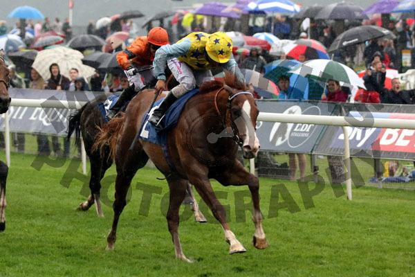 Arcanada - Race 6 (44)