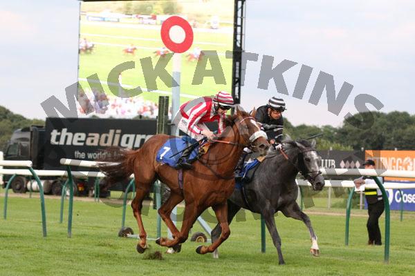 Race 7 - Aelius (11)