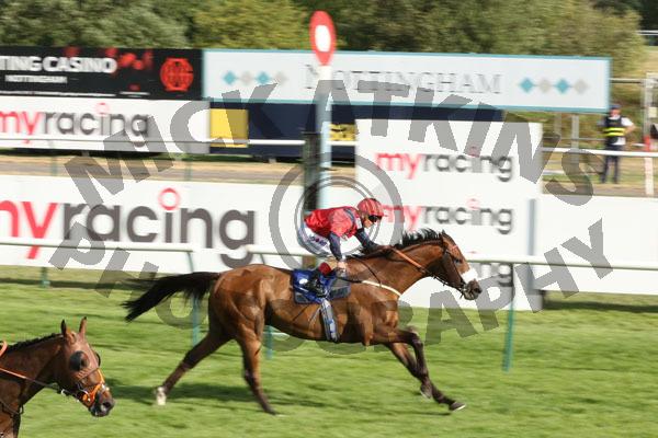 Race 7 - Bailarico (13)