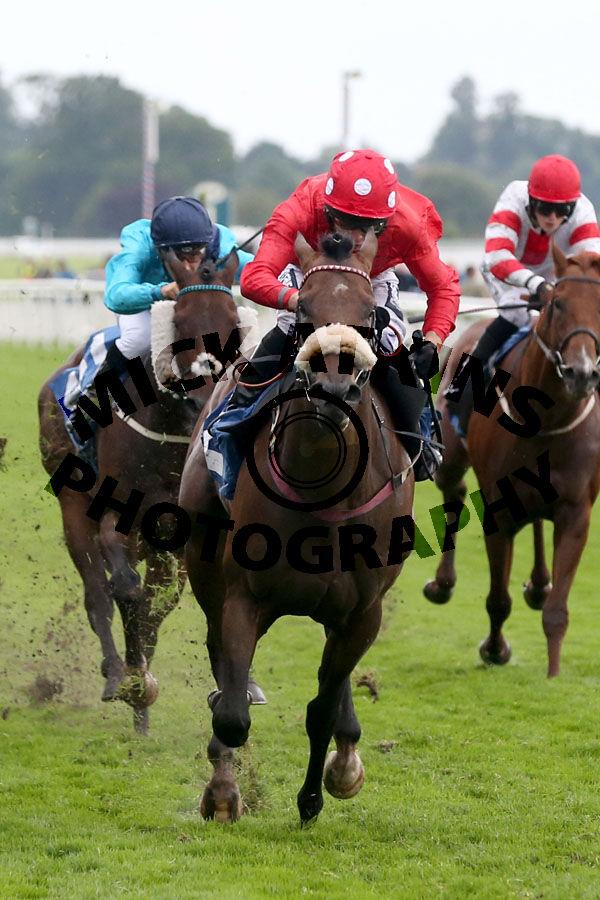 Race 7 - Blackrod (3)