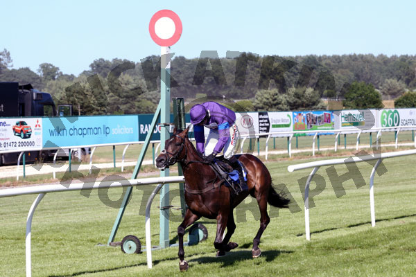 Race 7 - Longhouse Sale (6)