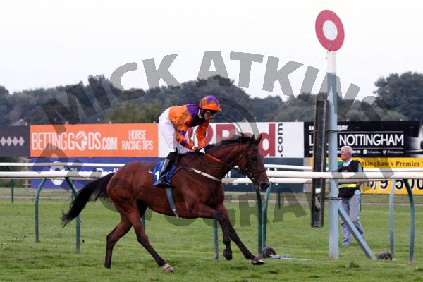 Race 7 - Quay Point (18)