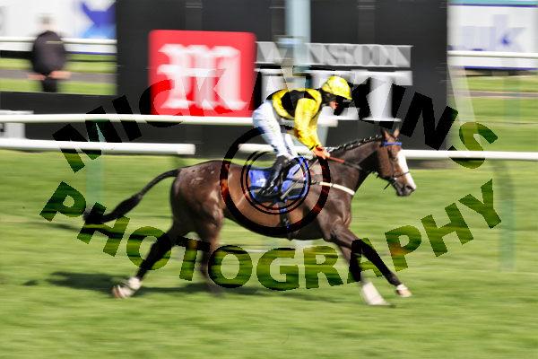 Race 7 - Tawseef (10)