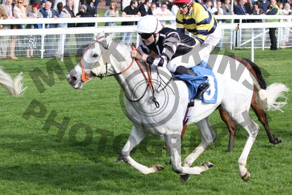 Spifer - Race 7 (21)