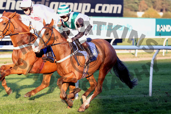Race 7 (2) - Stormin Norman