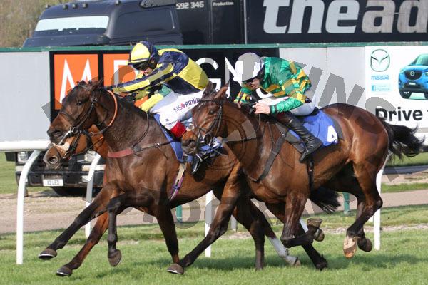 Whos My Jockey - Race 7 (37)