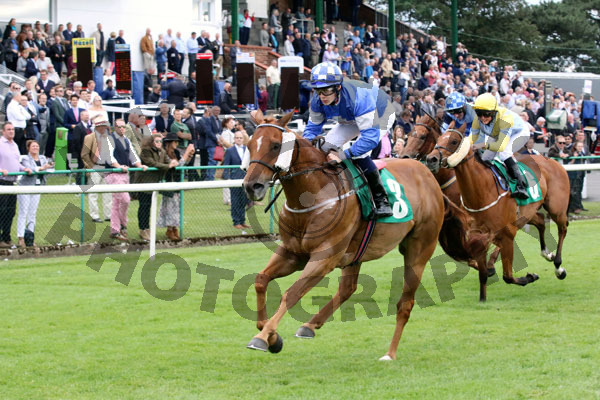 Race 8 - Danish Duke (10)
