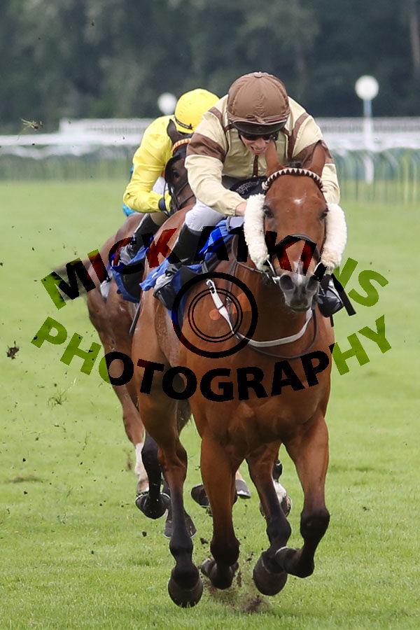 Race 8 (2) - Tadaany