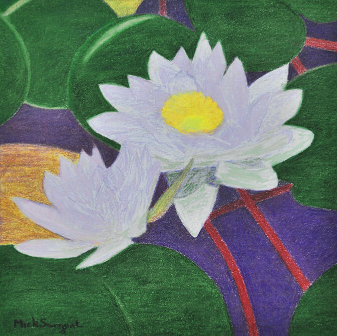 Pink Waterlilies   (coloured pencil)