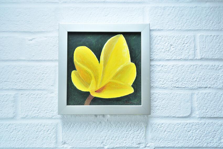 'Plumeria Rubra' Framed